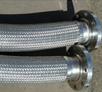 Flexible Pipe Hose Assembly with fixed Flanges